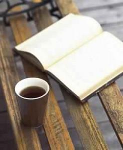 دفتر اليوميات